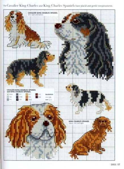 Embroidered Spaniel