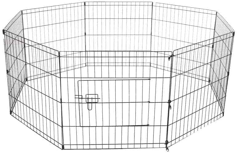Cavalier King Charles Spaniel Puppy Pen